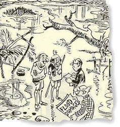Of commoners and crows: The genius of R K Laxman