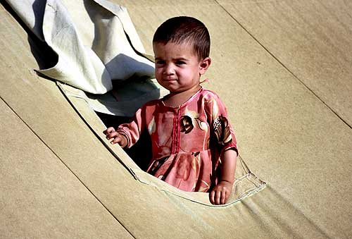 A girl looks out from her family tent at a camp in Mardan, about 120 km north west of Islamabad